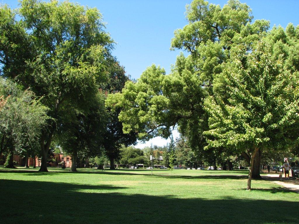 McKinley Park in East Sacramento